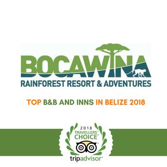 Bocawina Zipline and Adventures