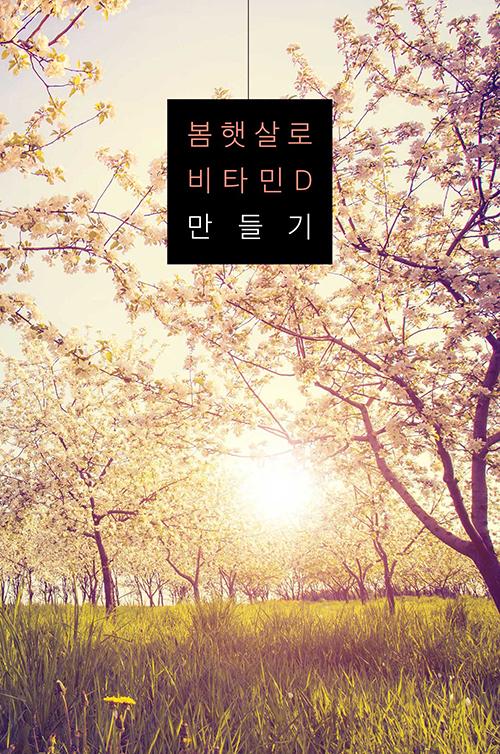 따뜻한 봄 햇살로 비타민 D 만들기