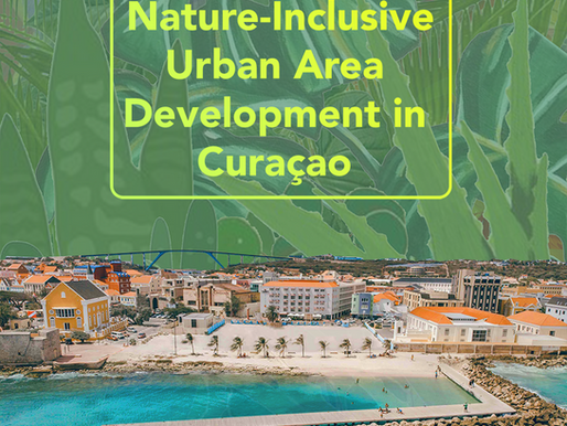Why we need nature-inclusive urban development in Curaçao