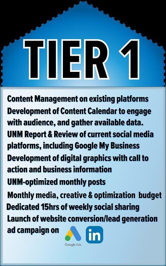 UNM Consulting_Social media marketing_se