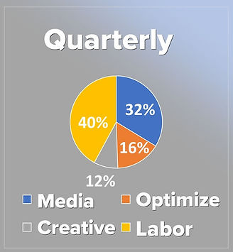 UNM Consulting_cost for services_Quarter