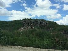 Ликвидация негативного воздействия на окружающую среду накопленных отходов производства и потребления, а также рекультивация земельного участка, расположенного примерно в 1200 м по направлению на северо-запад от города Камышин Волгоградской области
