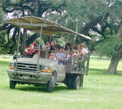 Giraffe+Ranch+truck+safari.jpg