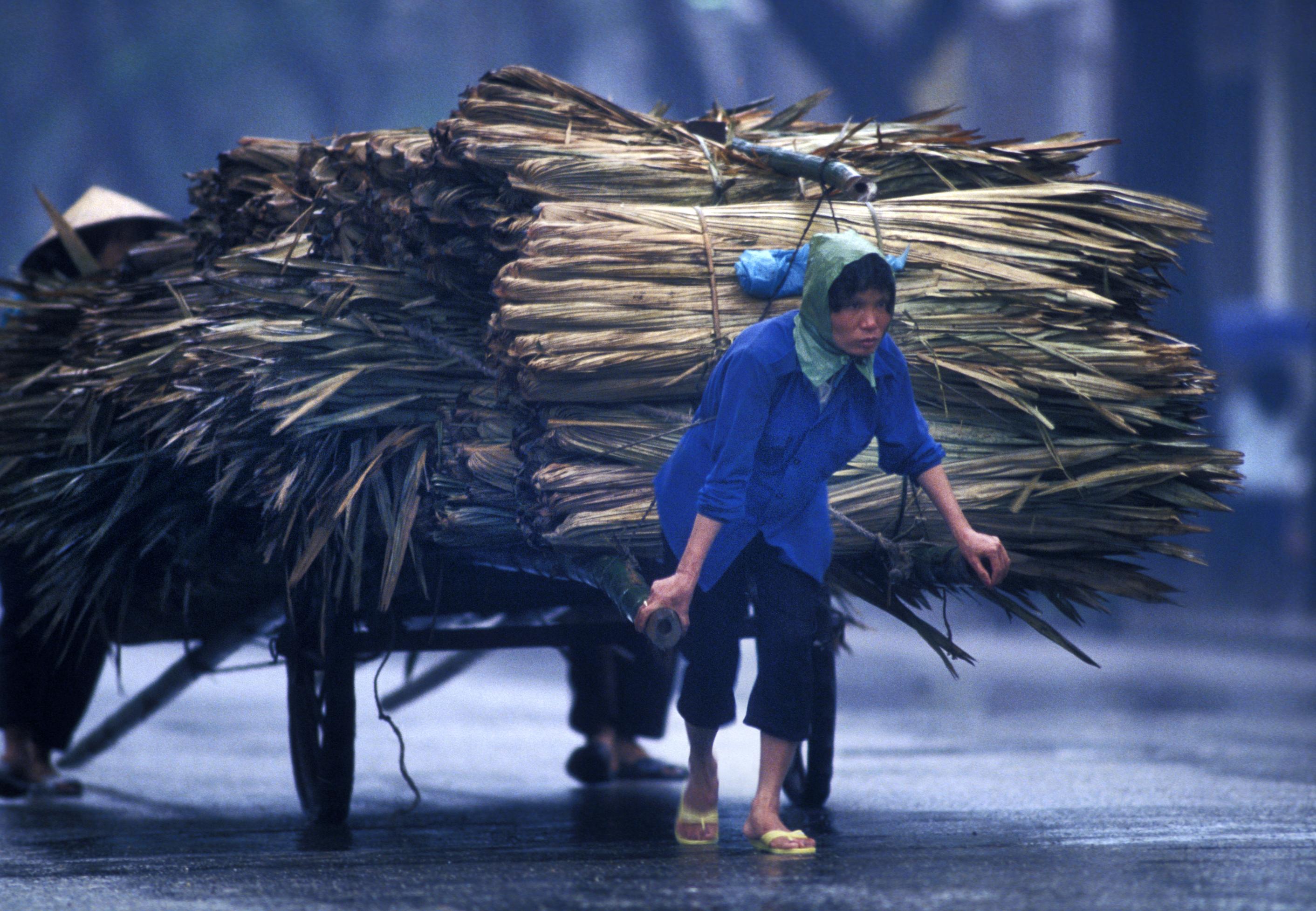 KTG Vietnam cart