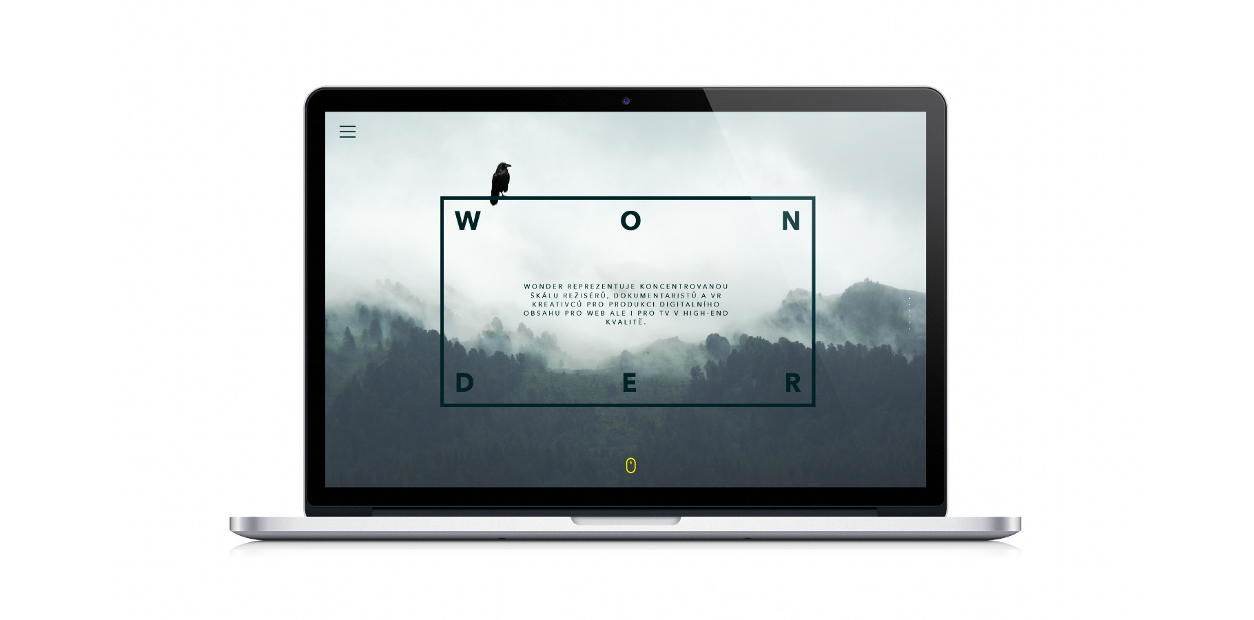 Wonder vizuální koncept - web