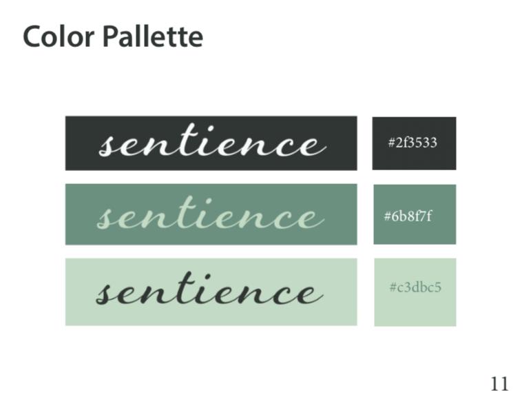 Color Pallatte