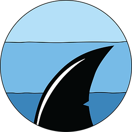 SHARK-FRONT.png