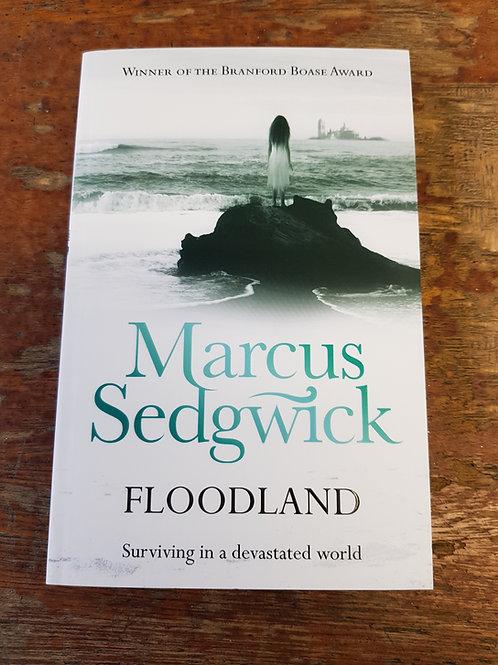 Floodland | Marcus Sedgwick