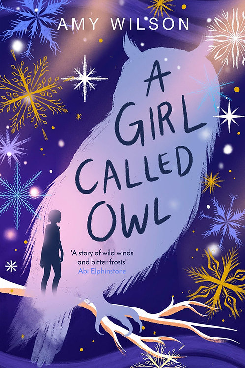 A Girl Called Owl | Amy Wilson