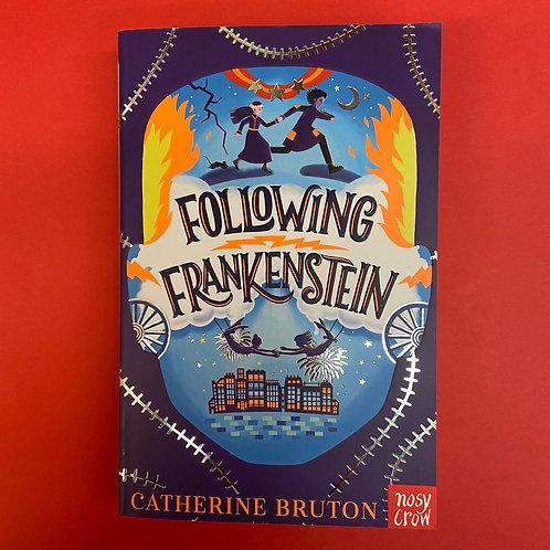 Following Frankenstein   Catherine Bruton