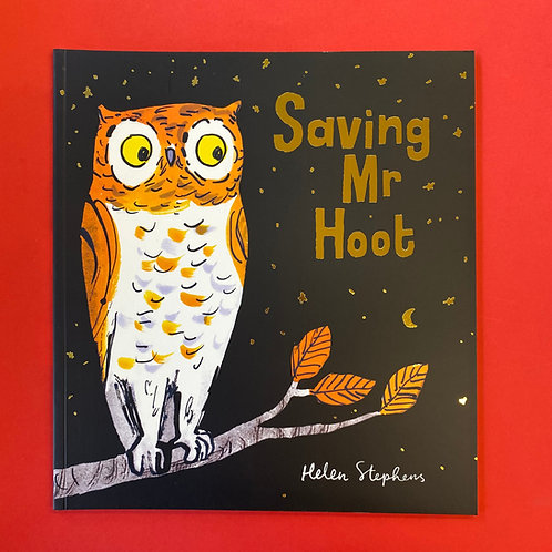 Saving Mr Hoot   Helen Stephens