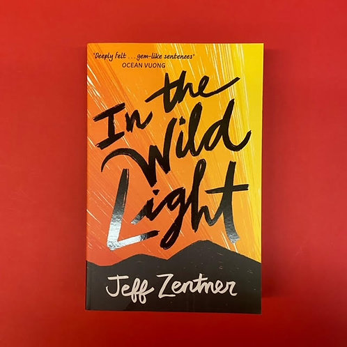 In The Wild Light   Jeff Zentner
