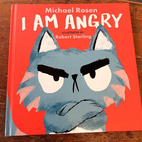 I Am Angry   Michael Rosen & Robert Starling