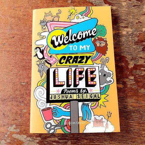 Welcome To My Crazy Life | Joshua Seigal