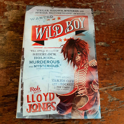 Wild Boy | Rob Lloyd Jones