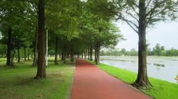 ランニング みさと公園