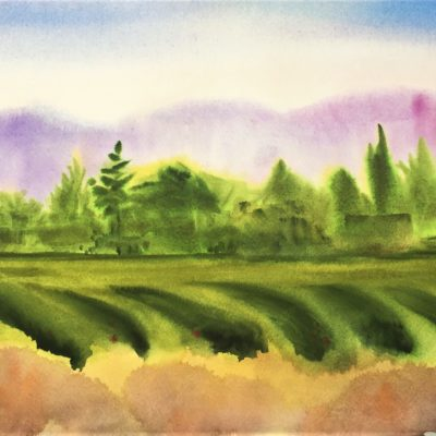 Yolo Farm