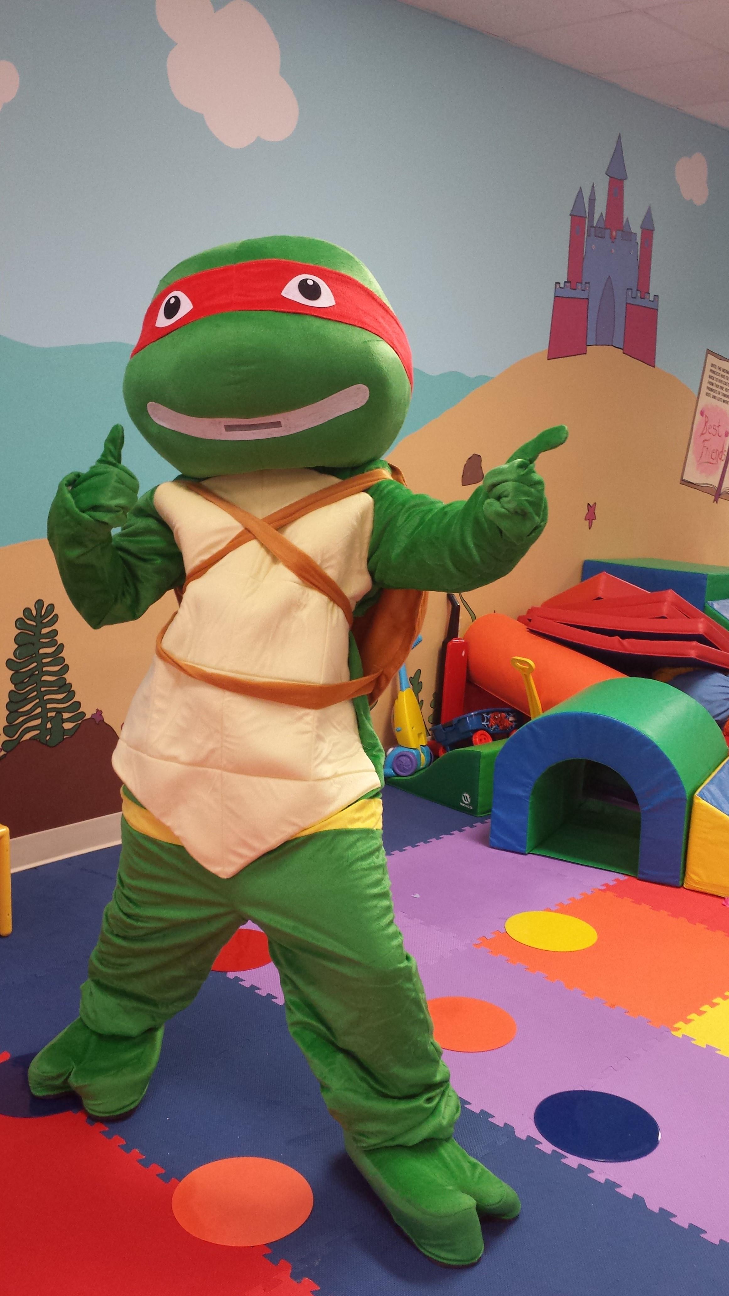 Ninja Turtle Fairytale Character