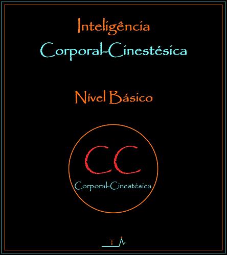4. Capa C-C Básico.png