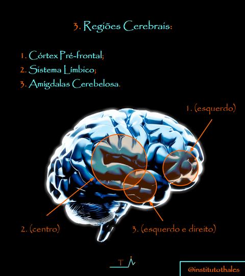 5.0 Cartilha Mo.png