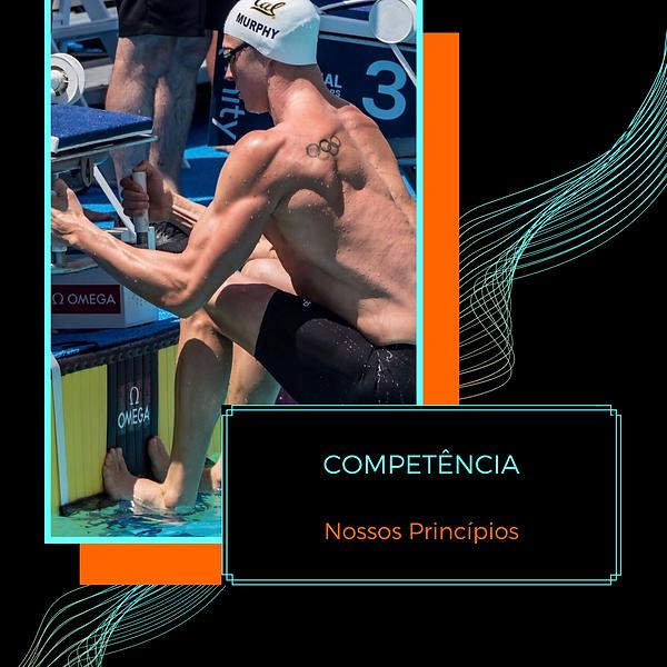 5.0_Princípios_IT_-_Competência.png