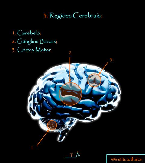5.0 Cartilha C-C.png