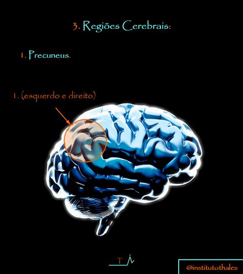 5.0 Cartilha Ex.png
