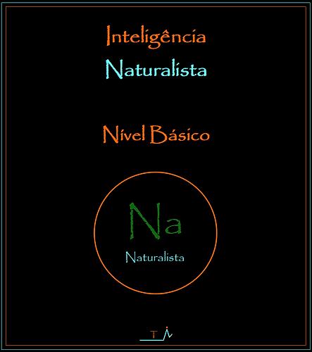 9._Capa_Na_Básico.png