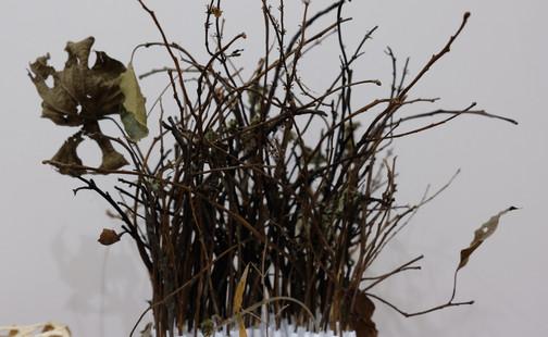 古睖久古, « 第2079號考掘場 » LIN Yu-Ta « Parcelle N°2079 » 蘇澳阿里史冷泉藝術季  In-Situ裝置作品計畫 Projet d'installation in-situ à Alisai (Su-ô), Taïwan  Processus créatif enregistré au 27 juin 2020 創作過程紀錄於 06.27.2020  影像紀錄 Réalisateur |劉彥宏 LIU YEN HONG