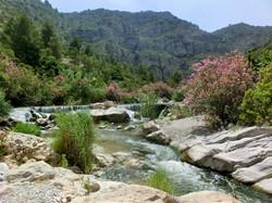 The River Serpis (Serpent)