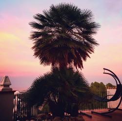 Swing Chair Sunset
