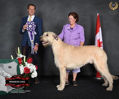 Declan Winners dog.jpg