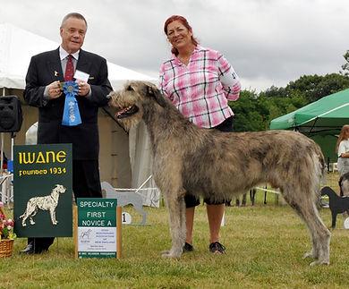 Fyre Novice Dog IWANE 2012.jpg