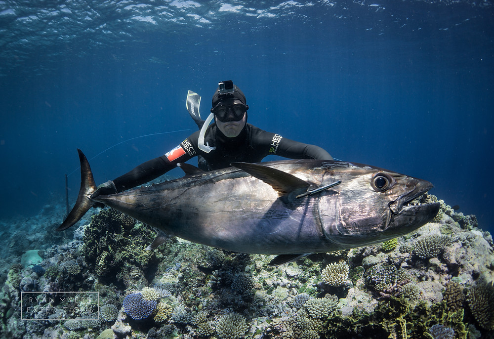 Ryan Myers Spearfishing