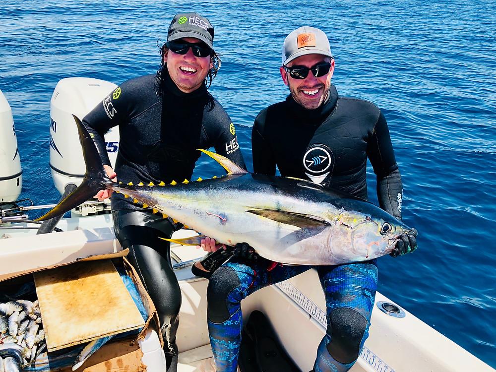 Spearfish Panama