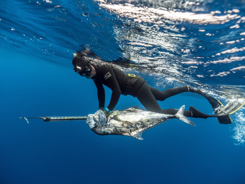 Spearfishing the Gulf with Huk