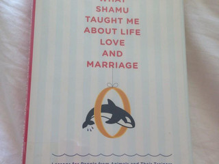 Book Review: What Shamu Taught Me About Life Love and Marriage - Amy Sutherland