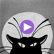 Cats_pics10.jpg