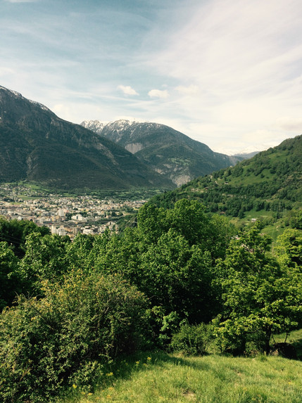 view on alps summer