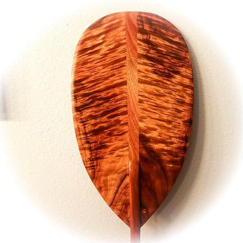 Curly Koa Paddle (CKP550)