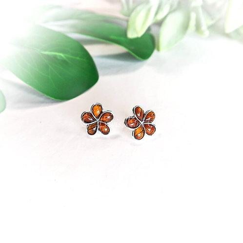 Koa & Silver Plumeria Stud Earrings , large