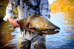 Salmon_Tailwater_Lodge