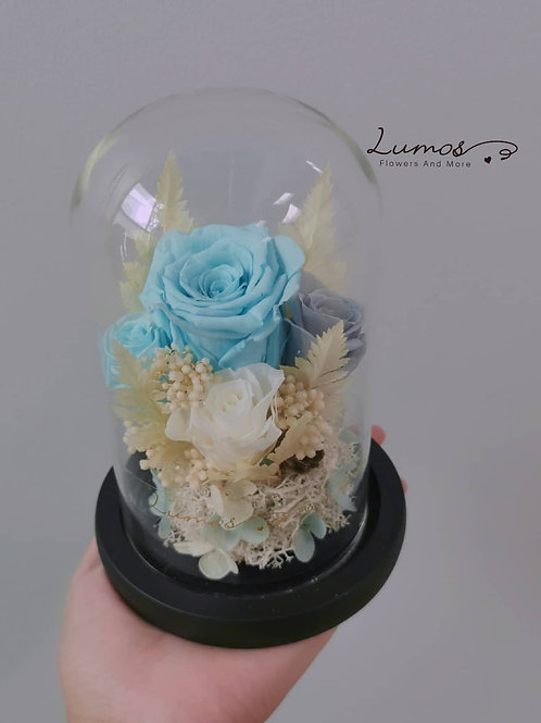 Preserved rose cloche