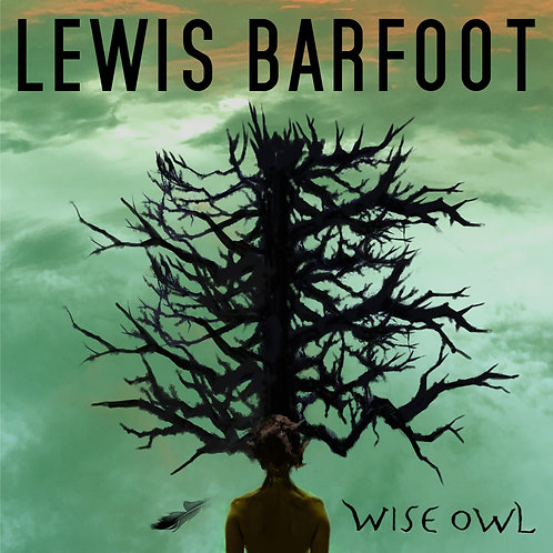Wise Owl CD single by Lewis Barfoot