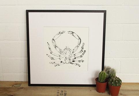 Spider crab print