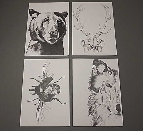 Set of four greetings cards