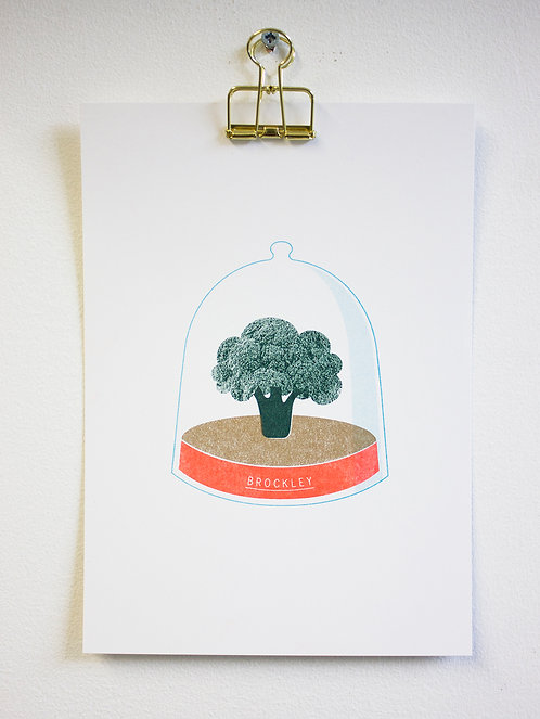 Brockley snow globe print