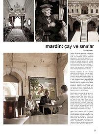 Mehmet Akalın, AVM işletme, Alışveriş merkezi kiralama, gezi notları, Mardin