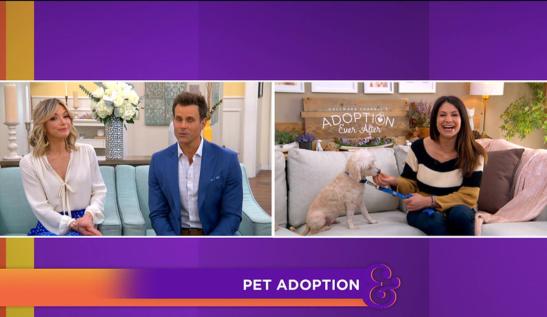 Joni Mitchell on Home & Family TV's Hallmark Channel #AdoptionEverAfter