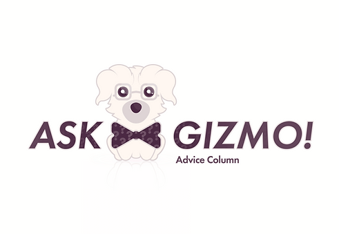 Ask Gizmo.png